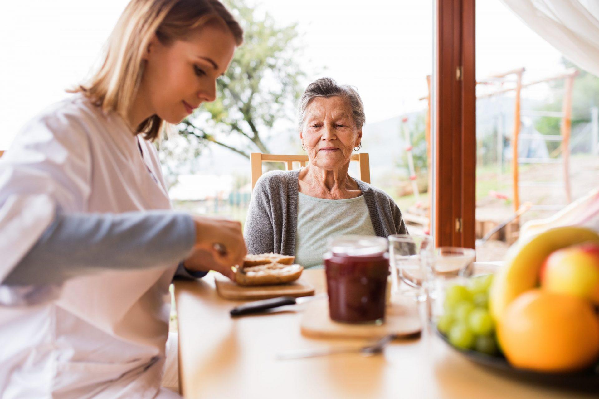 Ayuda A Domicilio. Apoyo En Tareas De Aseo E Higiene, Alimentación